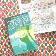 I Promessi Sposi, la Passione e il gatto che non voleva stare solo - Massimo Brusasco